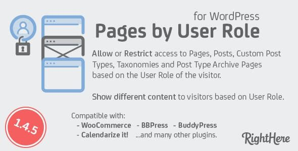 Pages by User Role for WordPress v.1.6.1.98877 Nulled