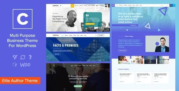 Capital Multi Purpose Business WordPress Theme