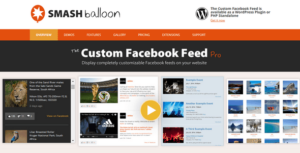v3.19.5 Custom Facebook Feed Pro By Smash Balloon Nulled