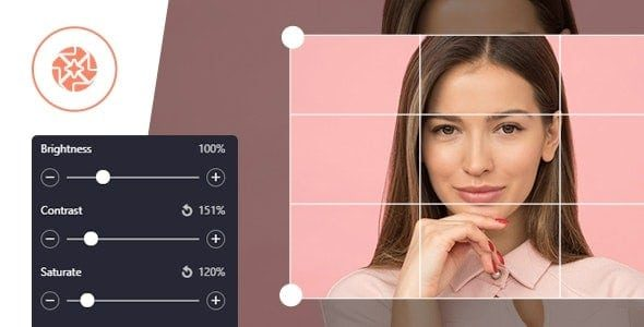 ProVision Image Editor for WordPress / WooCommerce with Folders File Manager