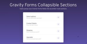 Gravity Forms Collapsible Sections v1.1.25 Nulled