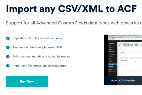 ACF Export Add-On Pro v1.0.4 Nulled